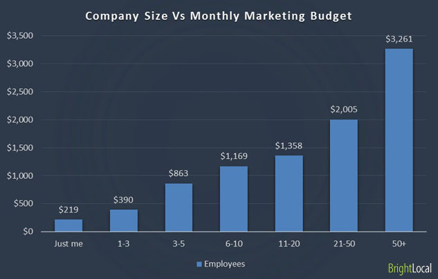 Marketing budget and company size