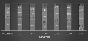 How does company size affect internet marketing activity?