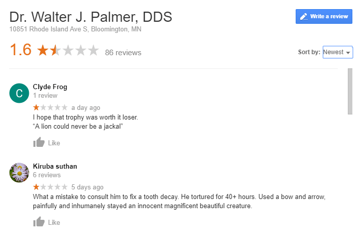 Dr Walter Palmer reviews